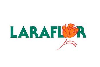 Laraflor Centro Augusta